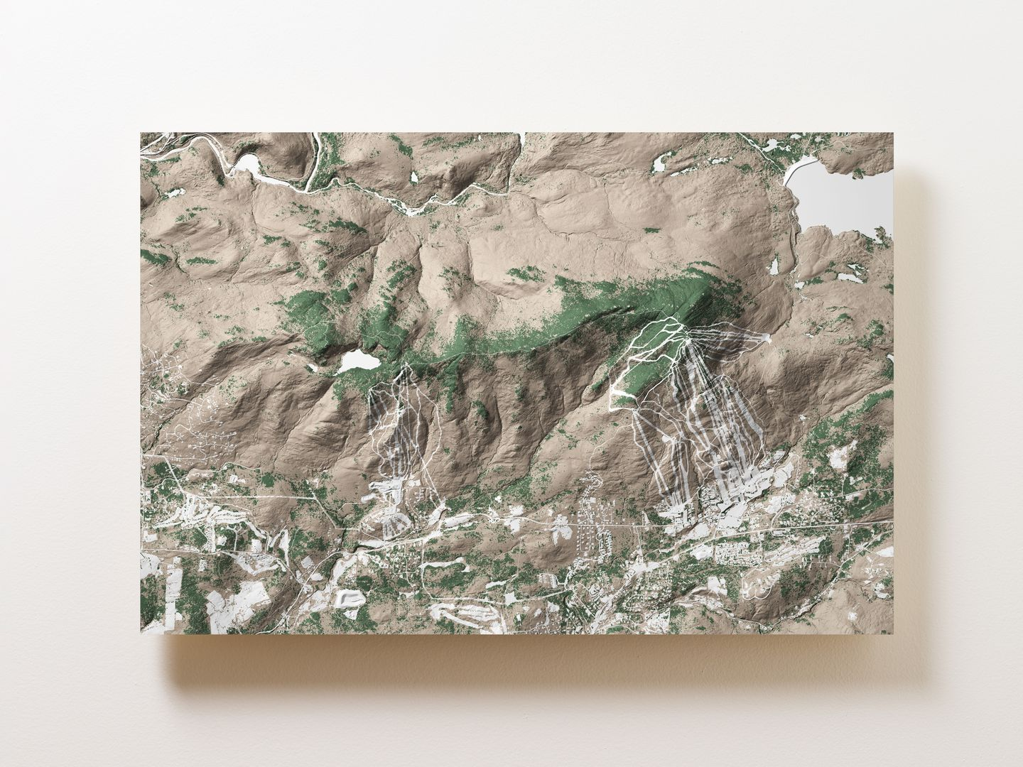 Mount Snow Wall Map